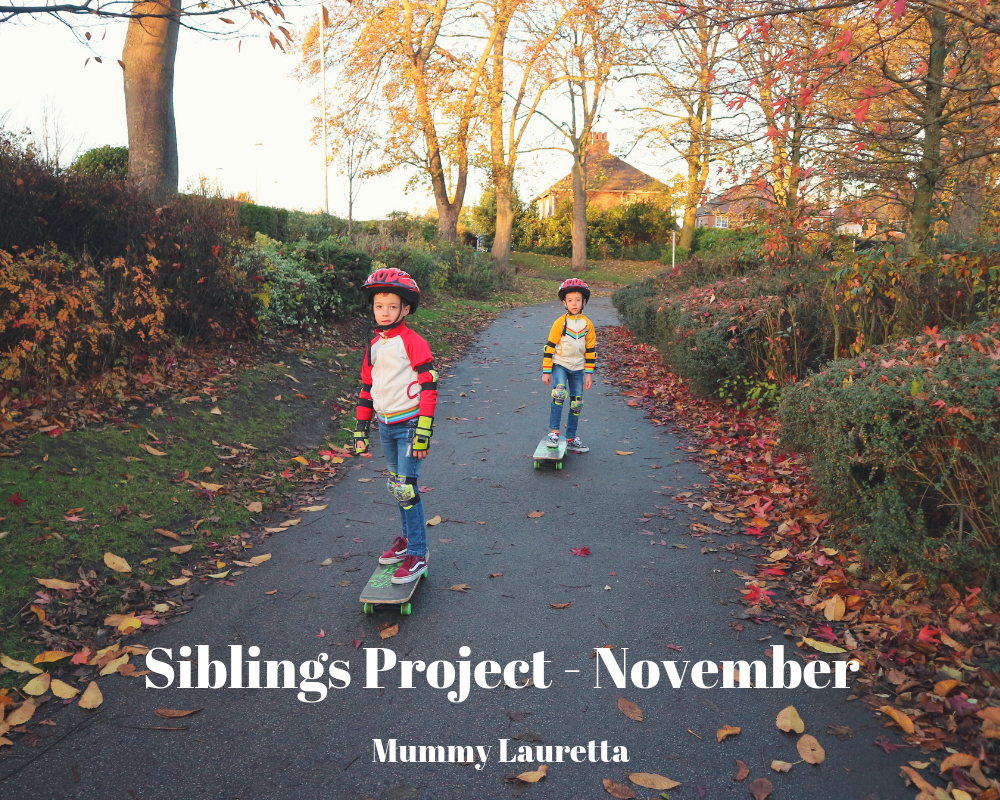 Siblings Project Nov 18 Blog