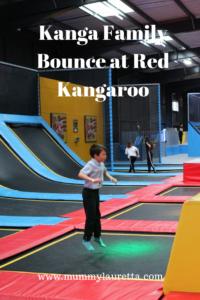 Red Kangaroo Review Pin