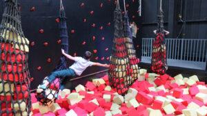 Kanga Family Bounce Session at Red Kangaroo