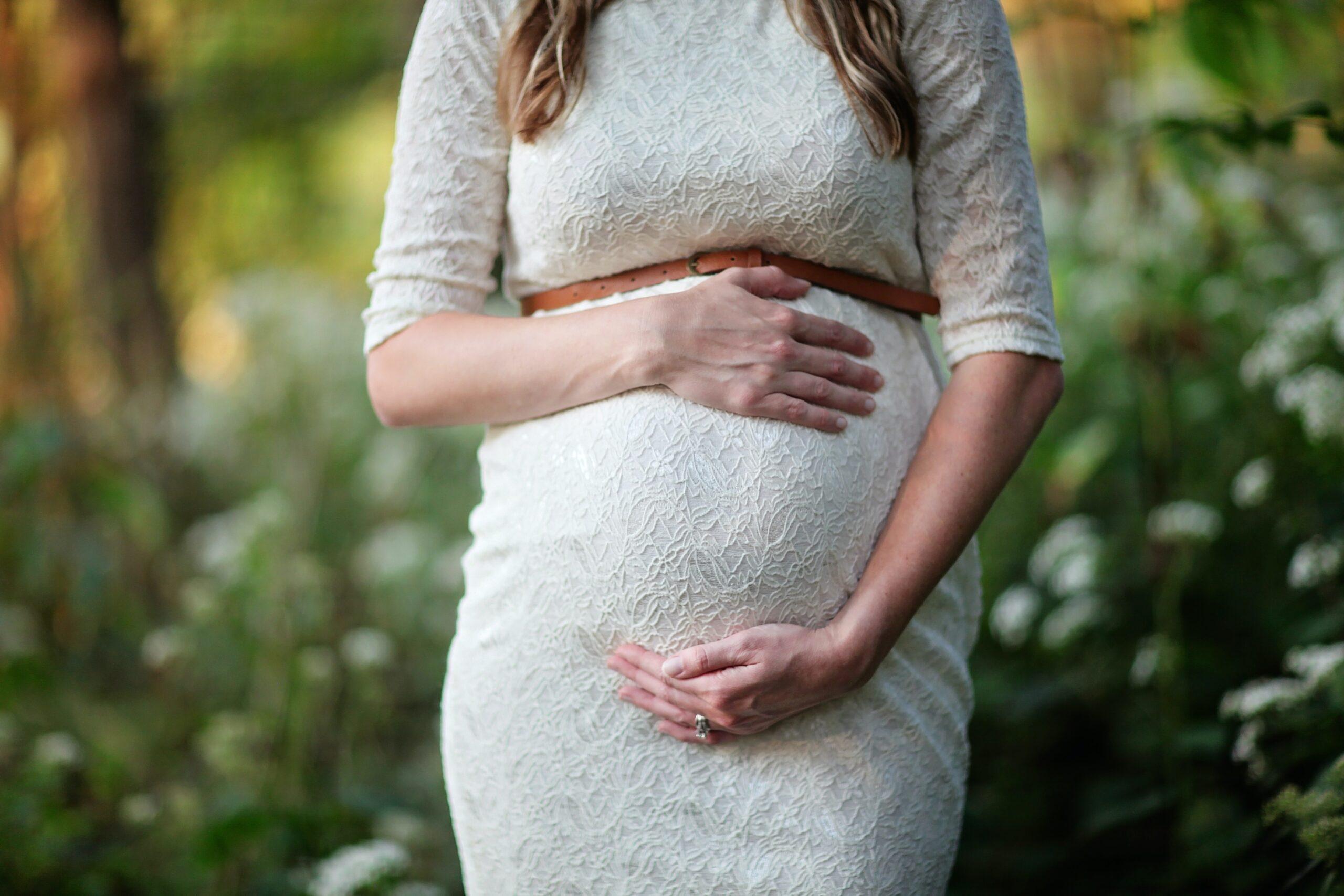 vegan pregnancy