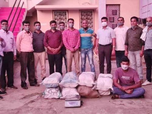 8 लाखांच्या गांजासह एकास अटक : स्थानिक गुन्हे शाखेची कारवाई