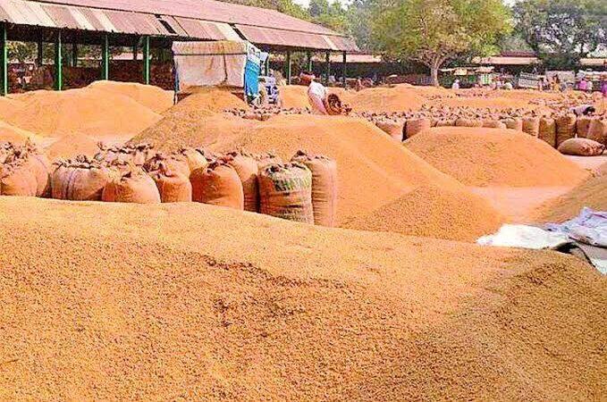 शेतकऱ्यांचे रब्बीचे धान्य आता चक्क शाळेत