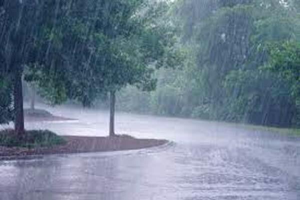 मराठवाडा, विदर्भात जोरदार पाऊस : नद्यांना पूर आल्याने अनेक गावांचा संपर्क तुटला