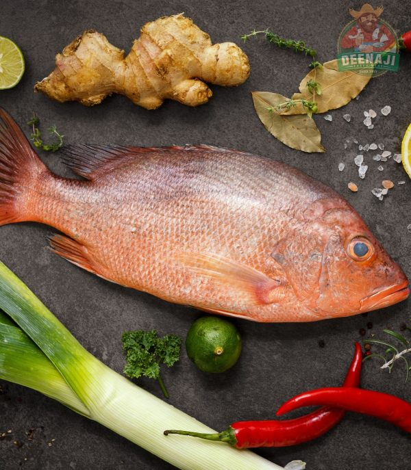 Red Snapper for Website image 1746 by 2000