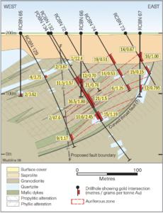 Wudinna Project Mineralisation