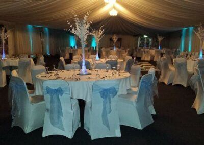 party marquee blue & white theme