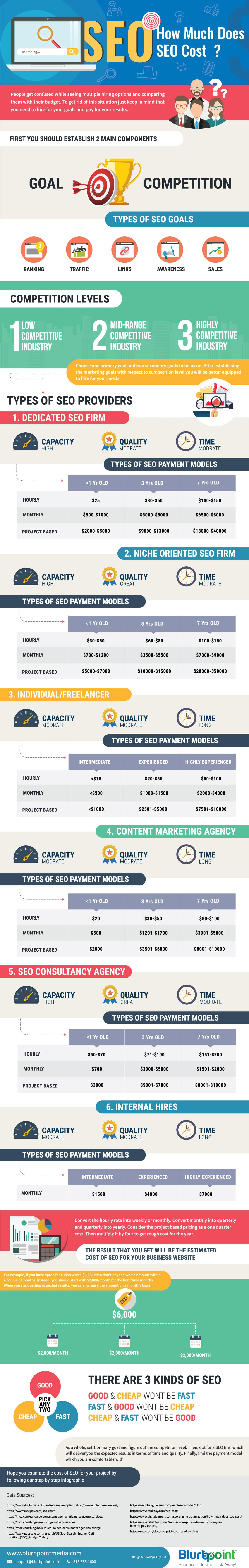How Much Does SEO Cost Infographics