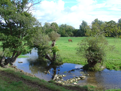 River Leach in the fields behind the Village Hall - Eastleach Village - Gloucestershire