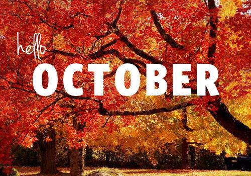 CHEQS MAGAZINE OCTOBER 2020
