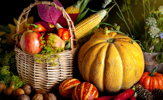 Next 'live' Church Service at St Andrews: 11am, Sunday 11th October - Harvest Festival