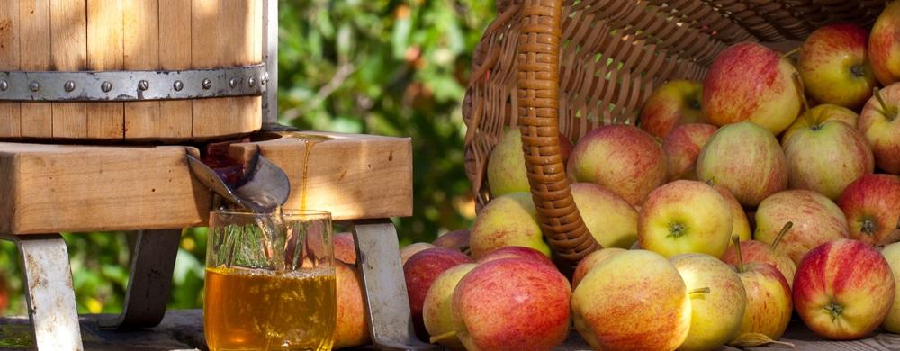 Eastleach Apple Pressing Day