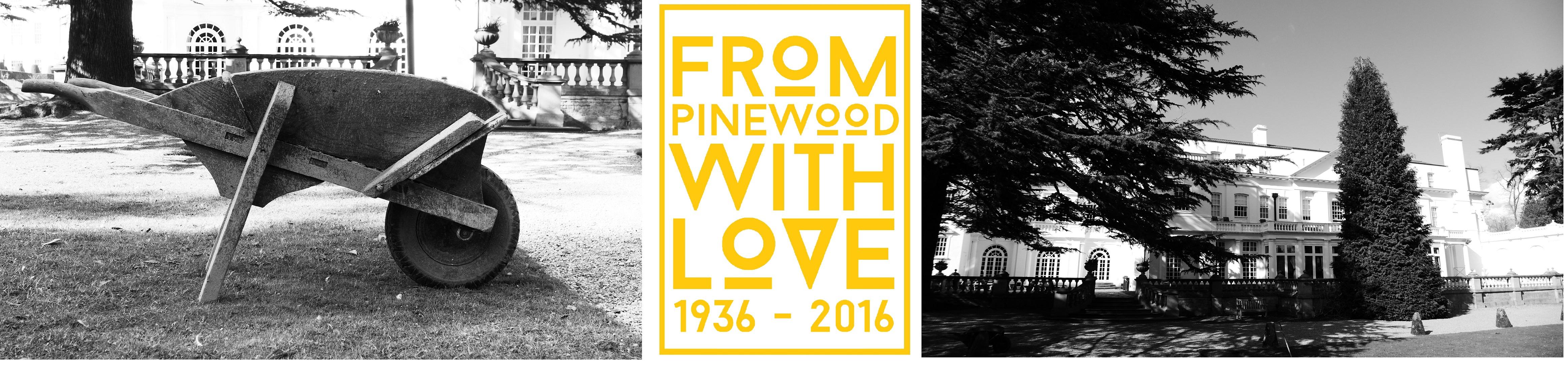 pinewood-montage-3