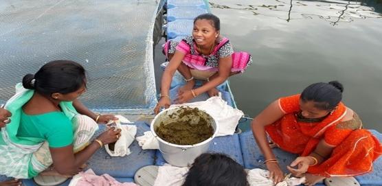 indiawaterportel | jaljeevika