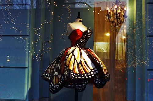 Butterfly:  Gemini – Scorpio