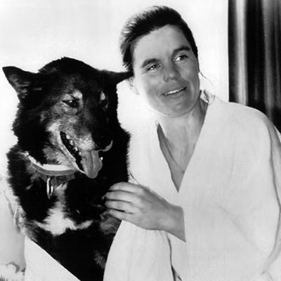 Susan Butcher: The Caring Dog Musher