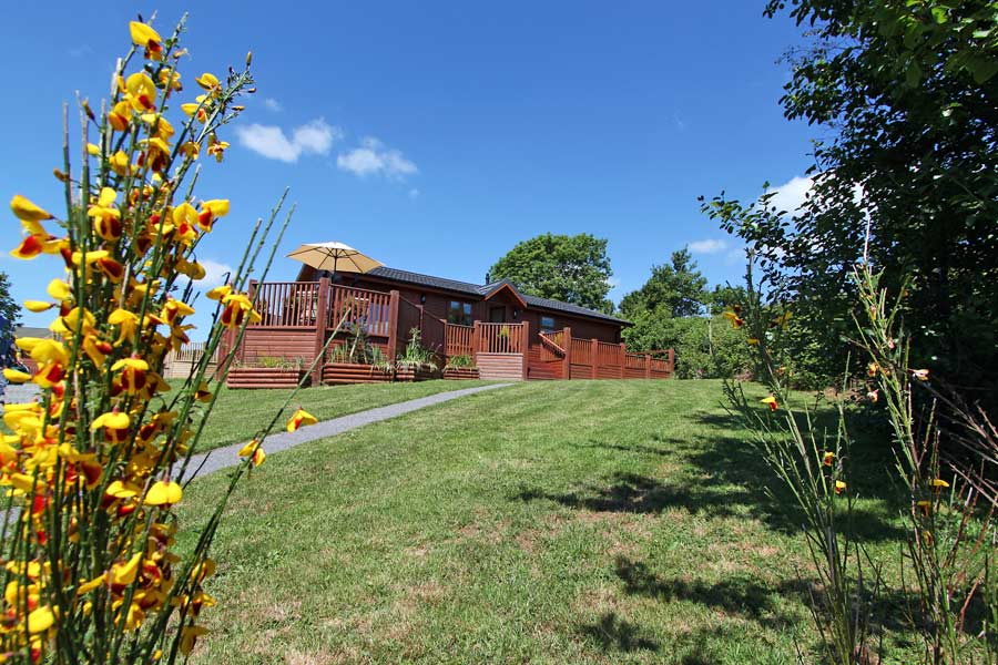 Spinney Lodge with flowers