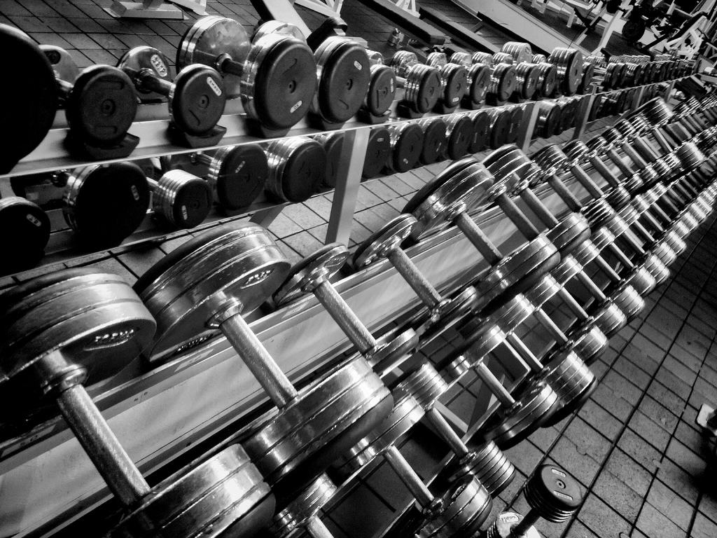 Gym Workout Equipment