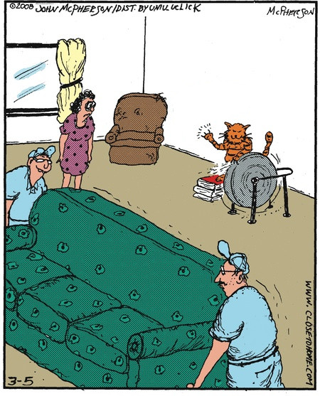 Купили новий диван