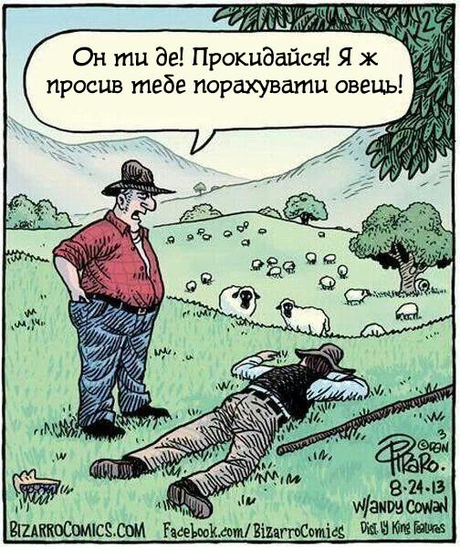 Рахував овець