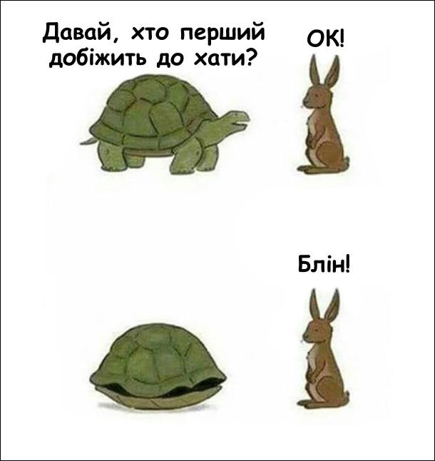 Парі зайця і черепахи. Гумор