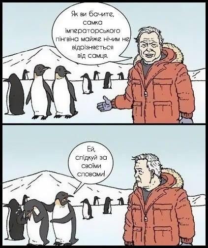 Репортаж з Антарктиди