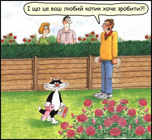 Сусідський кіт йде з туалетним папером і журналом в кущі троянд. - І що це ваш любий котик хоче зробити?!
