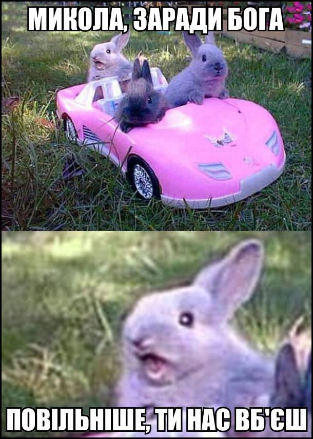 Мем про кроликів. Микола, заради Бога повільніше, ти нас вб'єш! На фото: Три кролики в іграшковому автомобілі