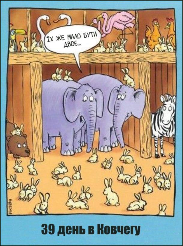 На 39 день плавання в Ноївому Ковчегу бігало повно кролів. Слон до слонихи каже: - Їх же мало бути двоє...