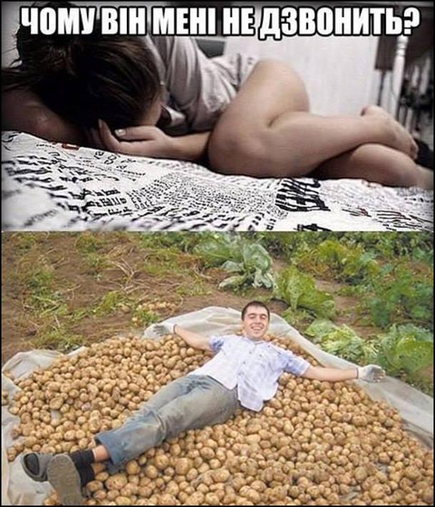 Мем Чому він мені не дзвонить? А він викопав картоплю і розлігся на ній
