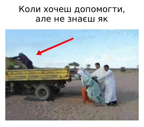 Коли хочеш допомогти, але не знаєш як. На фото: соловіки штовхають вантажівку. А один стоячи на кузові, штовхає кабіну