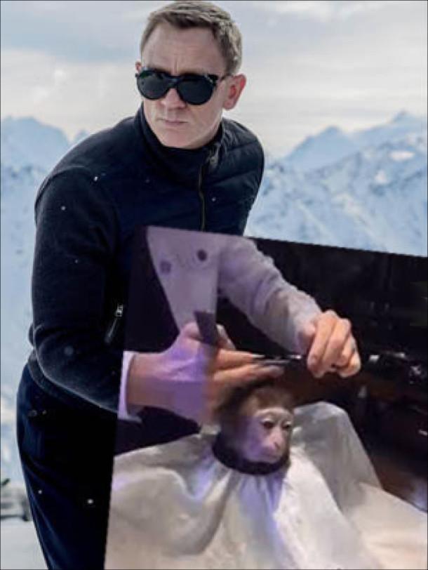Мем Monkey Haircut (підстригання мавпи). Джеймс Бонд