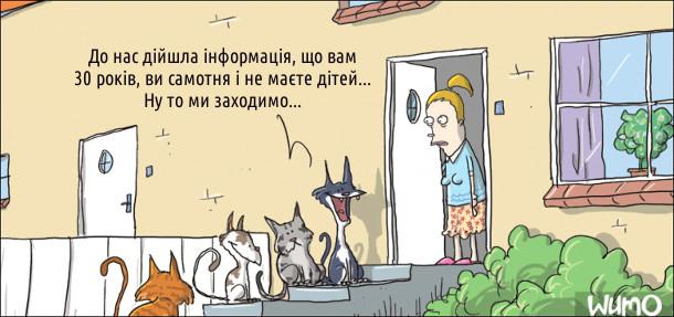 Коти підійшли до дверей будинку, назустріч їм господиня. Один з котів: - До нас дійшла інформація, що вам 30 років, ви самотня і не маєте дітей... Ну то ми заходимо...