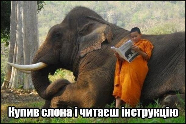 Купив слона і читаєш інструкцію