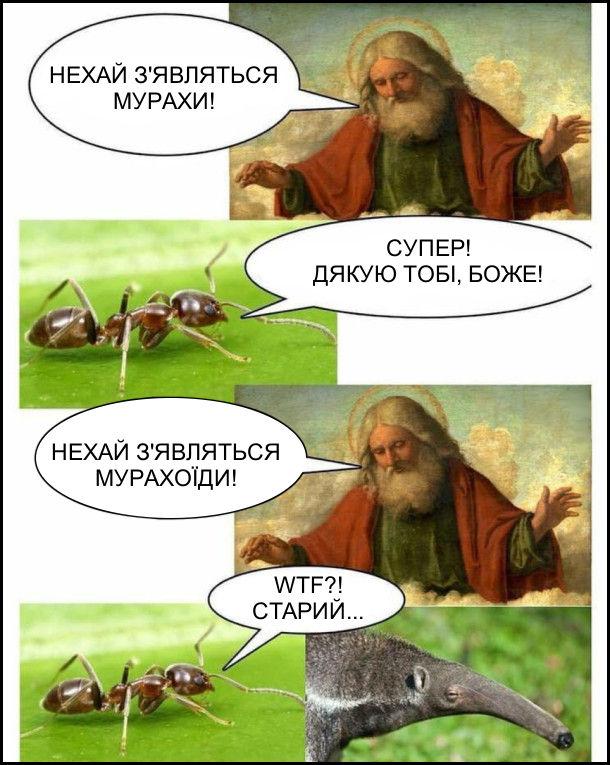 Створення світу. - Нехай з'являьбся мурахи! Мураха: - Супер! Дякую тобі, боже! - Нехай з'являться мурахоїди! Мураха: - WTF?! Старий...