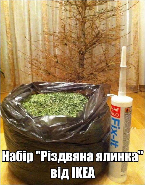 """Набір """"Різдвяна ялинка"""" від IKEA: суха ялинка без голок, мішок з голками і клей"""