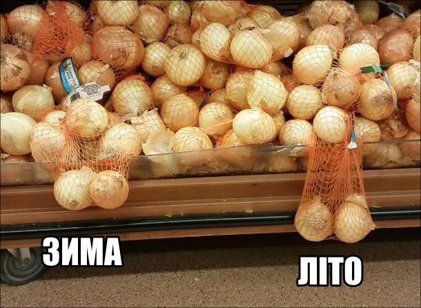 В супермаркеті з прилавку звисають дві сіточки з цибулею, по дві цибулини в кожній. Одна звисає високо, інша низько. Неначе чоловічі яйця взимку на холоді і в літню спеку