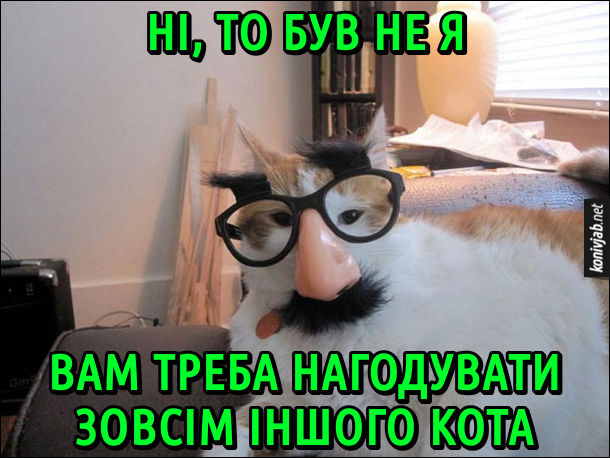 Хитрий кіт захотів двічі поїсти, тому надів на себе окуляри з бровами і вусами і каже: - Ні, то був не я. Вам треба нагодувати зовсім іншого кота