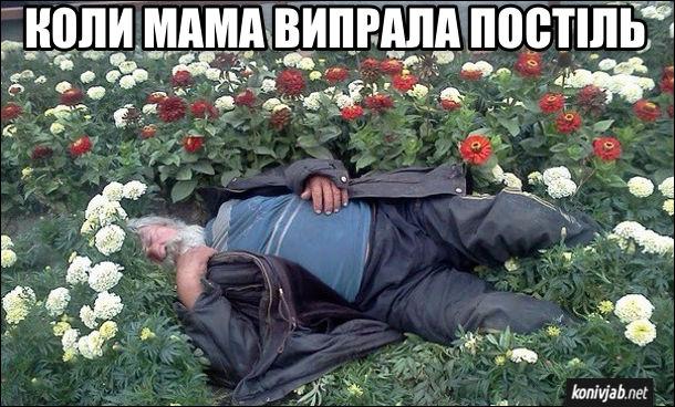 Це відчуття, коли мама випрала постіль. П'яниця заснув в клумбі серед квітів. Випрана постіль
