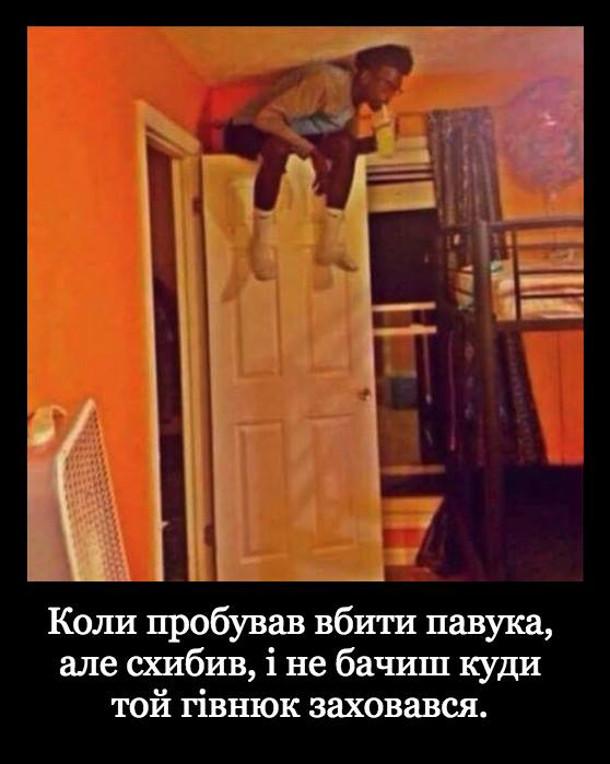 Прикол про павука. Коли пробував вбити павука, але схибив, і не бачиш куди той гівнюк заховався. Виліз на двері і тривожно розглядаєш кімнату