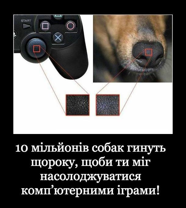 Прикол про джойстик. 10 мільйонів собак гинуть щороку, щоби ти міг насолоджуватися комп'ютерними іграми!