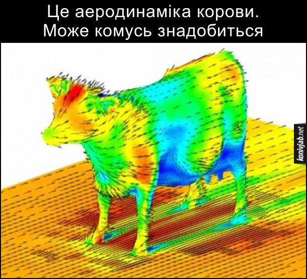 Це аеродинаміка корови. Може комусь знадобиться