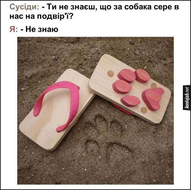 Взуття з собачими відбитками. Сусіди: - Ти не знаєш, що за собака сере в нас на подвір'ї? Я: - Не знаю. А сам вдягаю в'єтнамки з слідами собаки і роблю шкоду