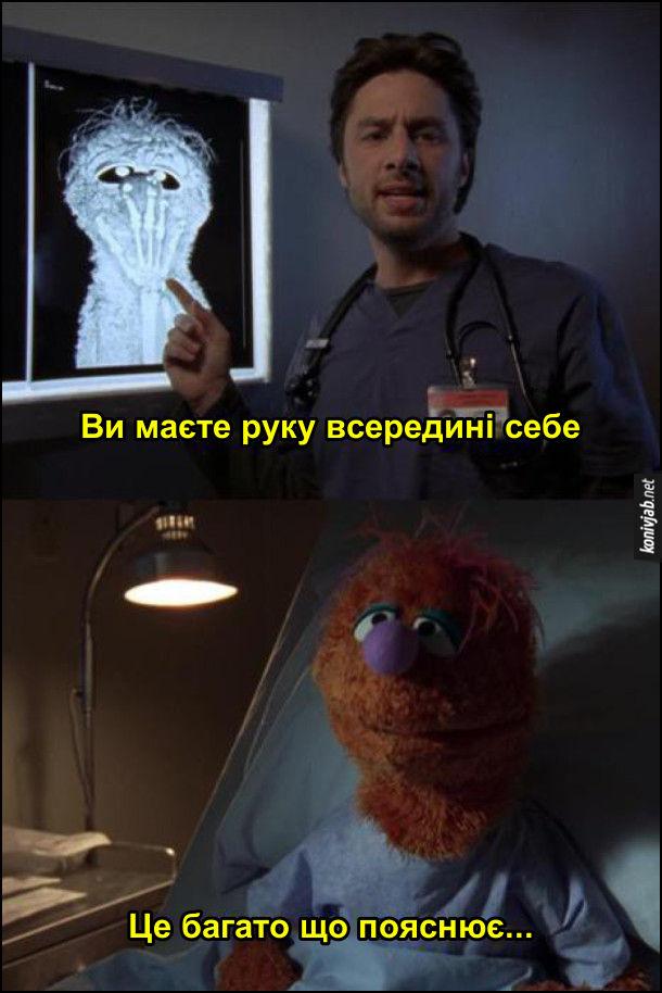 Жарт про маппетів. Маппет Ведмідь Фоззі в лікарні. Лікар показує йому рентген і каже: - Ви маєте руку всередині себе. Фоззі: - Це багато що пояснює...