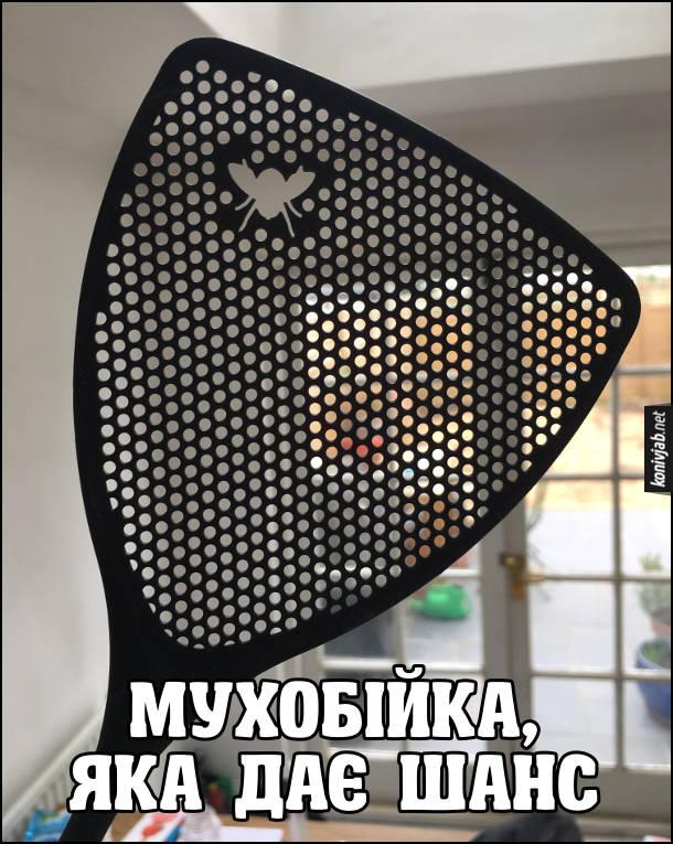 Жарт про мухобійку. Мухобійка, яка дає шанс. На  мухобійці (мухобийці) дірка в формі мухи