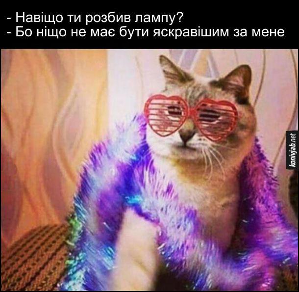 Жарт: Кіт розбив лампочку. Кіт одягнений, як король диско, в окулярах і боа. Його питають: - - Навіщо ти розбив лампу? - Бо ніщо не має бути яскравішим за мене