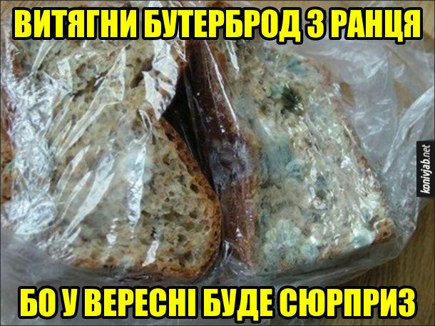 Прикол про літні канікули. Витягни бутерброд з ранця, бо у вересні буде сюрприз
