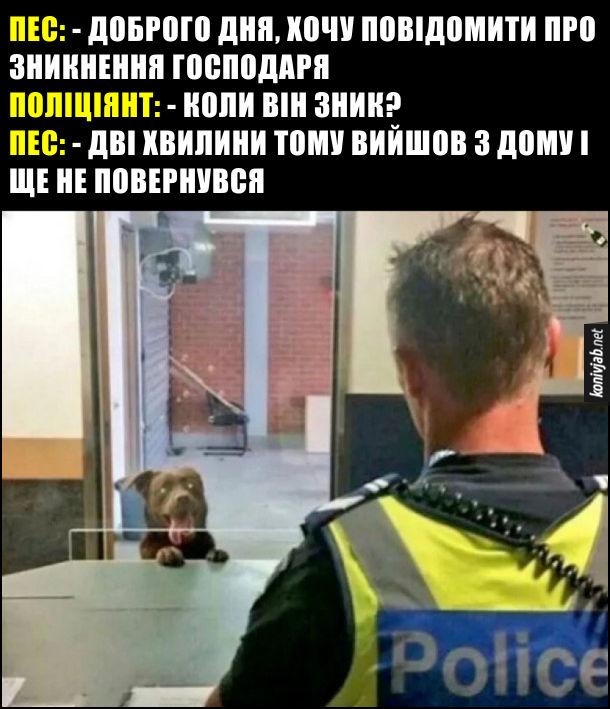 Пес прийшов в поліцію. Пес: - Доброго дня, хочу повідомити про зникнення господаря. Поліціянт: - Коли він зник? Пес: - Дві хвилини тому вийшов з дому і ще не повернувся