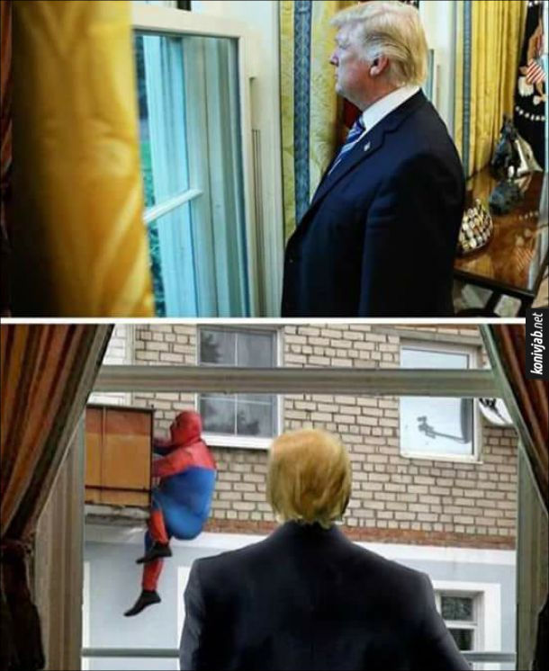 Мем з Трампом. Дональд трамп дивиться у вікно, а за вікном гладкий соловік в костюмі спайдермена, лізе на балкон
