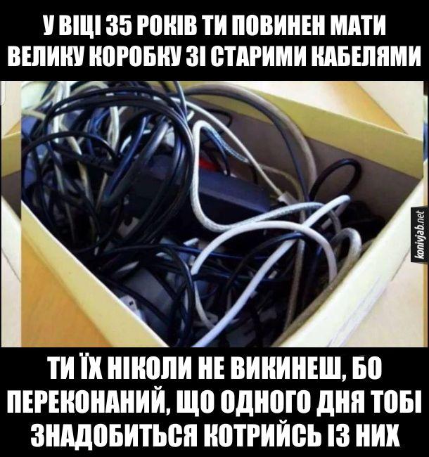 Жарт про чоловічу логіку. У віці 35 років ти повинен мати велику коробку зі старими кабелями. Ти їх ніколи не викинеш, бо переконаний, що одного дня тобі знадобиться котрийсь із них