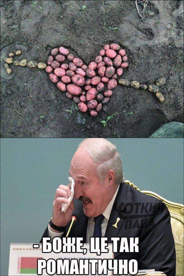 Прикол про Лукашенка. З картоплі викладено серце пробите стрілою. Олександр Лукашенко: - Боже, це так романтично